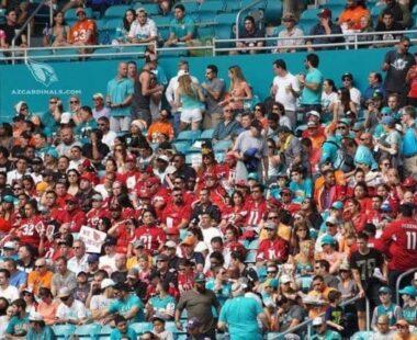 Birdgang fans inside stadium